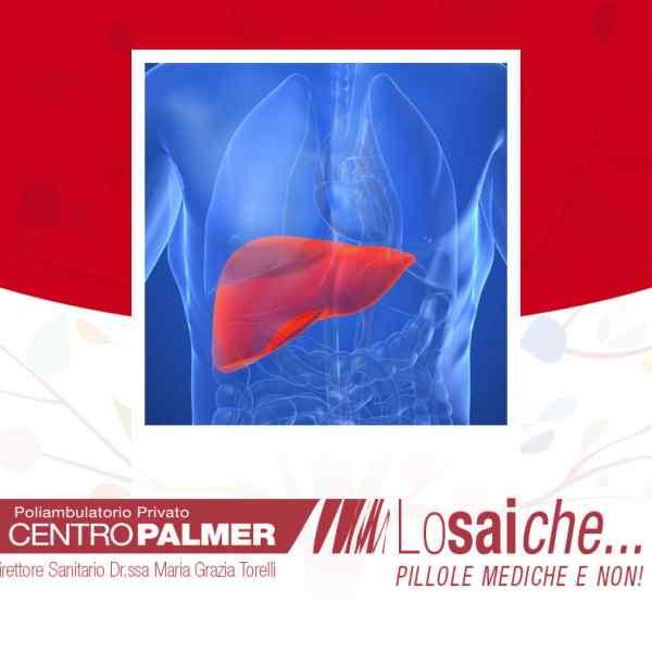 …L'ECOGRAFIA del fegato è molto importanteperché permette di rilevare eventuali NODULI tumorali benigni o maligni?