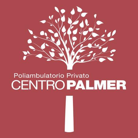 Favicon Centro Palmer