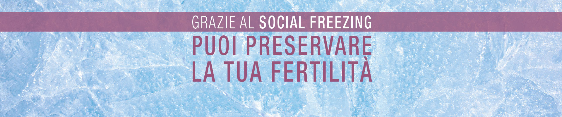 Social Freezing Centro Palmer - slide